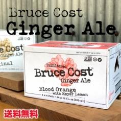 BCGA ブラッドオレンジ 24本 ジンジャーエール