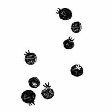 さかうえだいすけ・SAKAUEDAISUKEのイラスト刻印データ/プチトマト